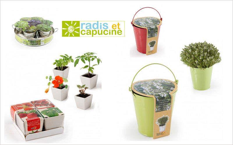 Radis Et Capucine Kit de jardinage Jardinage Extérieur Divers  |