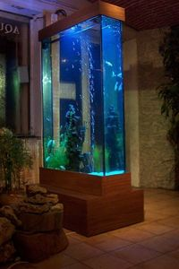 Atelier Paul Louis Duranton Aquarium