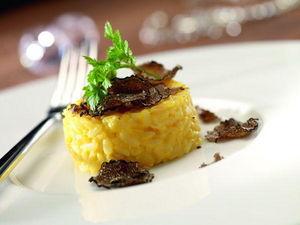RAK PORCELAINE -  - Assiette Plate