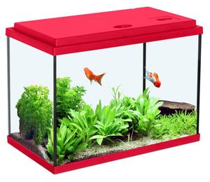 ZOLUX - aquarium enfant rouge cerise 33.5l - Aquarium