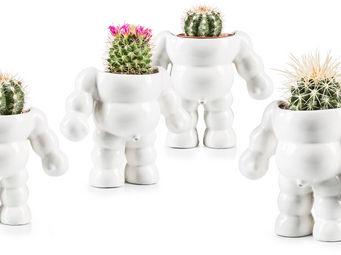 Donkey - king cactus / flower pot - Pot De Fleur