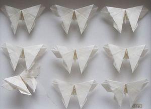 TSUYU BRIDWELL - papillons - Sculpture