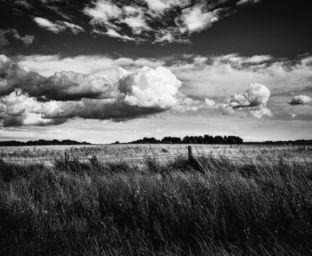 ALEX ARNAOUDOV -  - Photographie