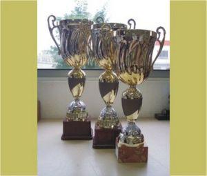 Gerner -  - Coupe Commemorative