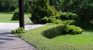 Jean-Jacques Lecuru -  - Jardin Paysager