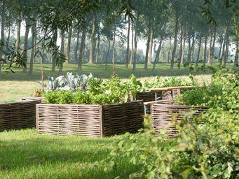 FOREST AVENUE & CO -  - Carré Potager