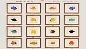 Beaume Collection -  - Oeuvre Num�rique