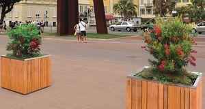 City Design - batur - Bac À Arbre