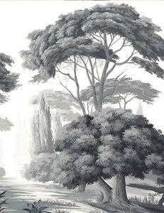 Ananbô - pins et oliviers grisaille - Papier Peint Panoramique