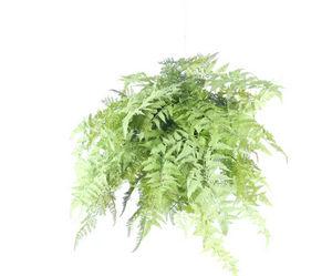Pomax - fougère - Plante Artificielle