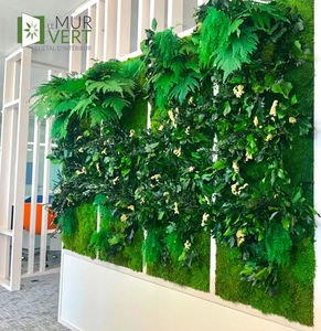 LE MUR VERT - végétal stabilisé - Mur Végétalisé