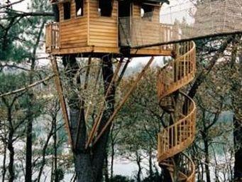 La Cabane Perchee -  - Cabane Dans Les Arbres
