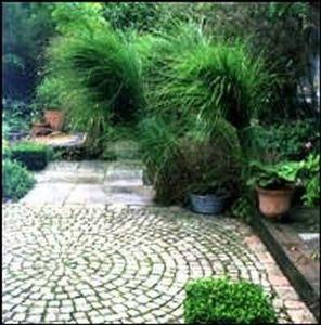 Compositeurs De Jardins -  - Jardin Paysager
