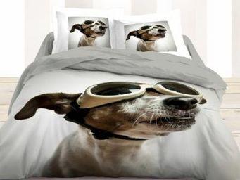TODAY - housse de couette et taies d'oreiller flying dog - Housse De Couette