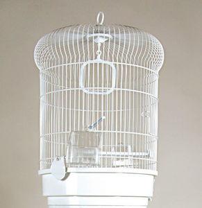 ZOLUX - cage oiseaux coquelicot blanche 35x35x48cm - Cage À Oiseaux