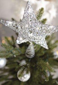 Blachere Illumination -  - Etoile De Noël