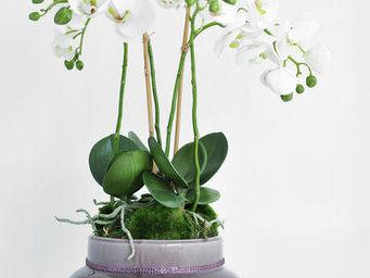 NestyHome - orchidée phalaenospis - Fleur Artificielle