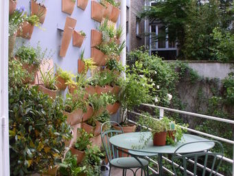 Espace Buffon - mur végétal - Mur Végétalisé
