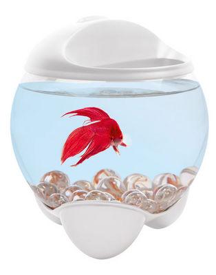 Tetra - Aquarium-Tetra-Aquarium tetra betta bubble blanc 1.8 l 15.7x15.7x