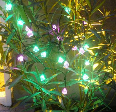 FEERIE SOLAIRE - Guirlande lumineuse-FEERIE SOLAIRE-Guirlande solaire diamants 20 leds roses et vertes