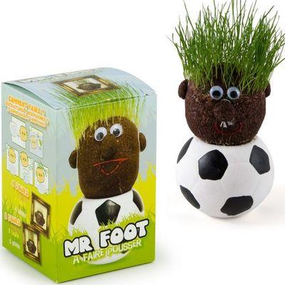 Radis Et Capucine - Potager d'intérieur-Radis Et Capucine-Mr Foot et sa tête à pousser pour tous les support