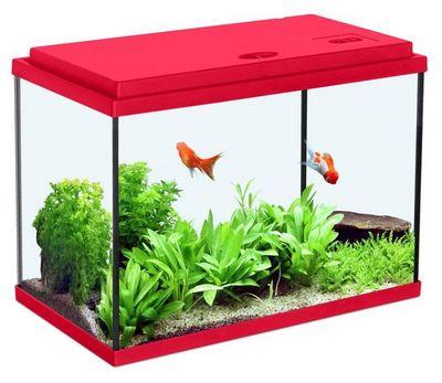 ZOLUX - Aquarium-ZOLUX-Aquarium enfant rouge cerise 33.5L