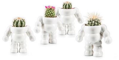 Donkey - Pot de fleur-Donkey-King Cactus / Flower Pot