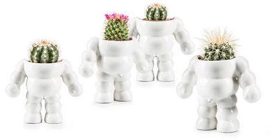 Donkey - Pot de fleur-Donkey-King Cactus / Flower Pot