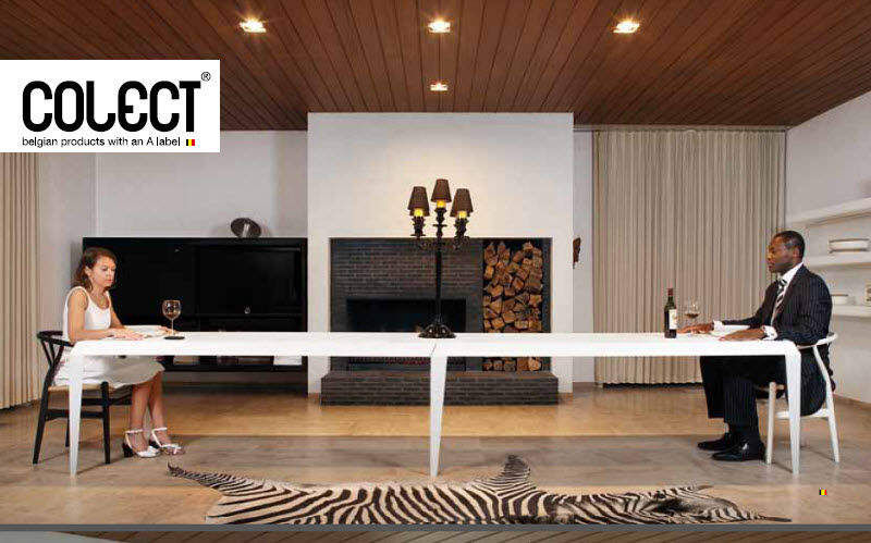 COLECT    Dining room | Eclectic