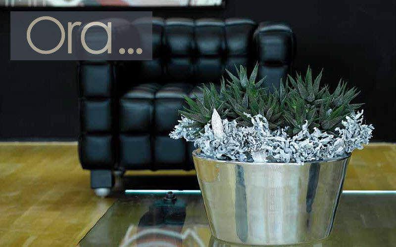 ORA HOME Flower box Window box Garden Pots Entrance | Design Contemporary