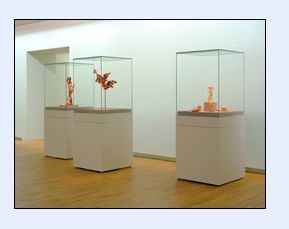 Vitrines Sarazino Museum display case
