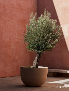 Tree pot-DOMANI-Terracotta