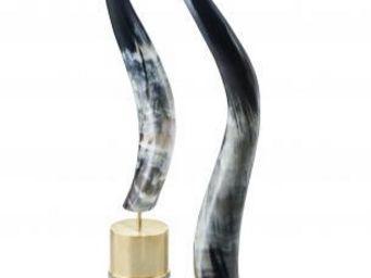 ARCA HORN -  - Hunting Horn