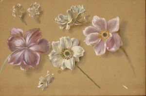 Galerie Emeric Hahn - eglantines - Watercolour