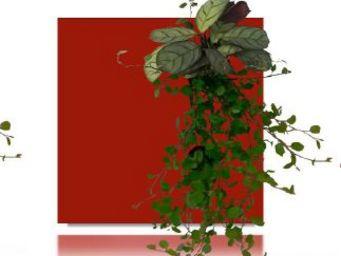 WALLFLOWER -  - Organic Artwork