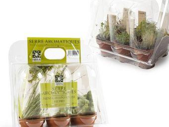 Radis Et Capucine - miniserre 6 pots pour des plants d'herbes aromati - Interior Garden