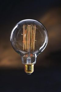 JURASSIC LIGHT - swan - Light Bulb Filament
