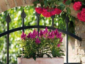DEROMA France - oll - Flower Box