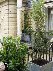 JARDIN EN CAPITALE - balcon- - Decked Terrace