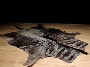 Galerie Luc Berthier -  - Animal Skin Rug
