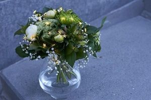 Sirius -  - Decorative Vase