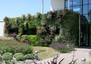 VERTISS -  - Grass Covered Wall