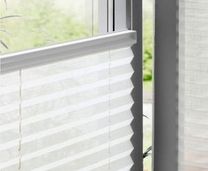 Winter Creation -  - Pleated Blind