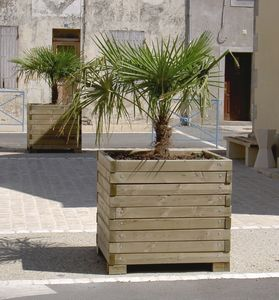jp husson amenagement collectivite -  - Tree Pot