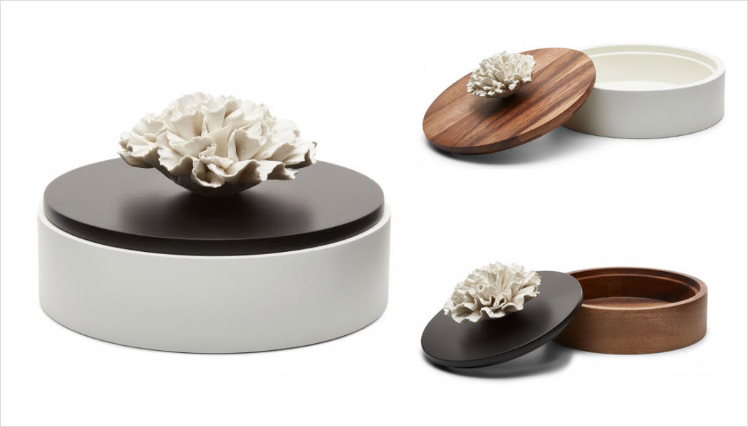 ANOQ Deko Box Dekorschachteln Dekorative Gegenstände  |