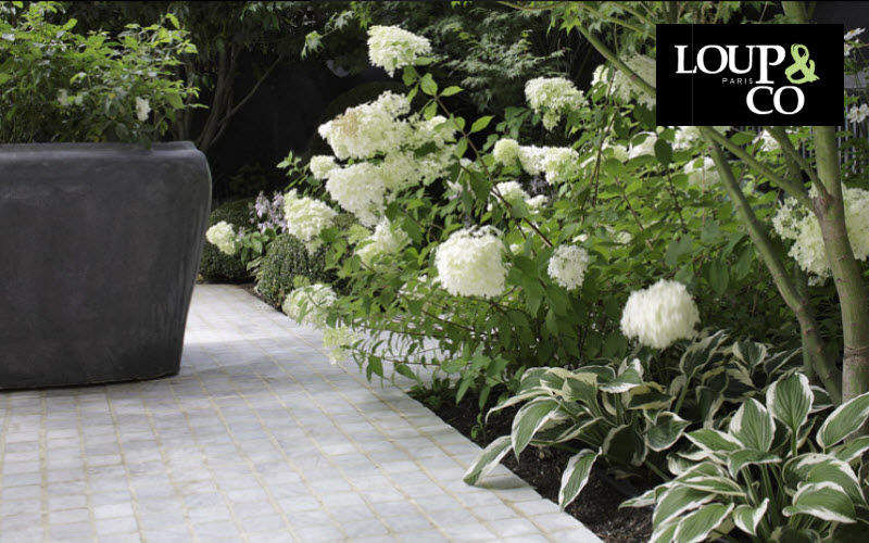 LOUP & CO    Terrasse | Land