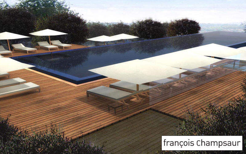 FRANCOIS CHAMPSAUR  |