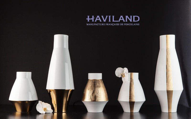 Haviland Ziervase Dekorative Vase Dekorative Gegenstände  |