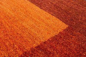 NAZAR - tapis gabbeh 70x230 terra - Moderner Teppich