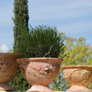 Le Chene Vert -  - Anduze Blumentopf